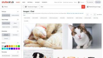 Comment Trouver des Images Libres de Droit pour votre Site Web ?