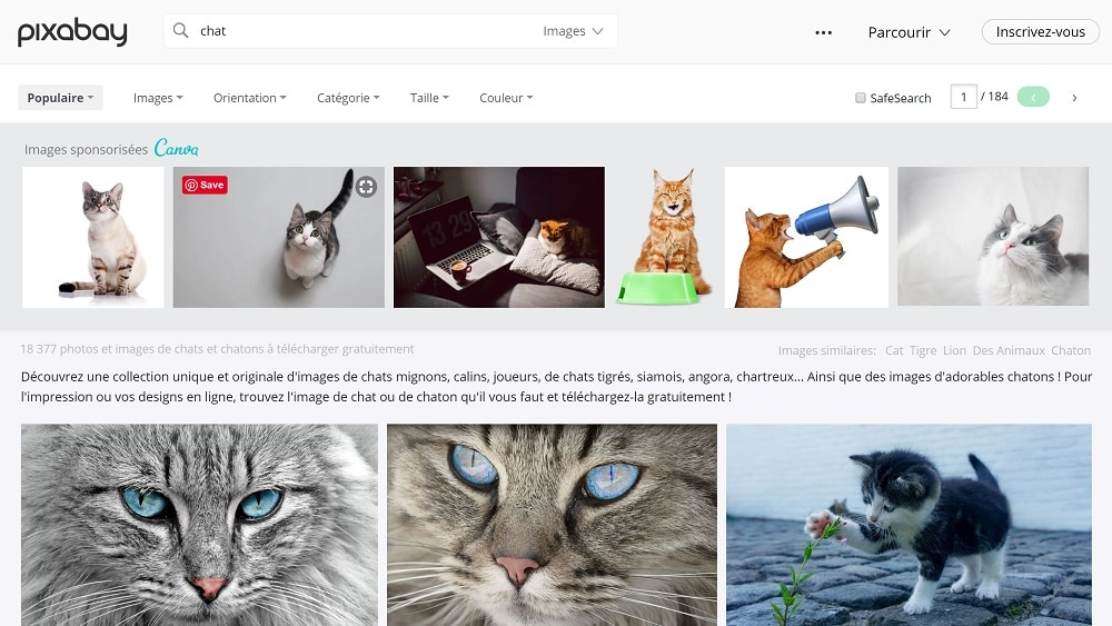 Comment trouver des images libres de droit pour votre site Web ? - Marketing de Contenu