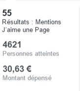 Analyser résultats campagne publicitaire facebook