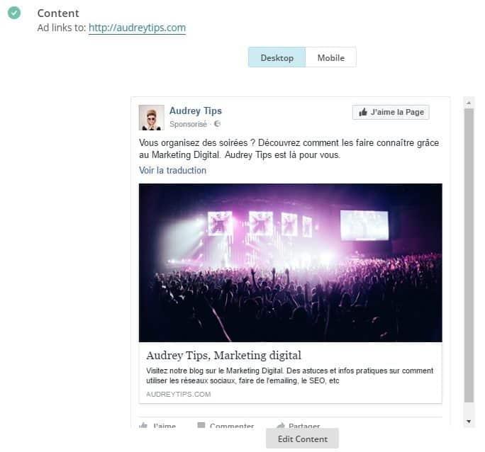 Créer Des Publicités Facebook Ads Via Mailchimp ? - Référencement Payant (SEA)