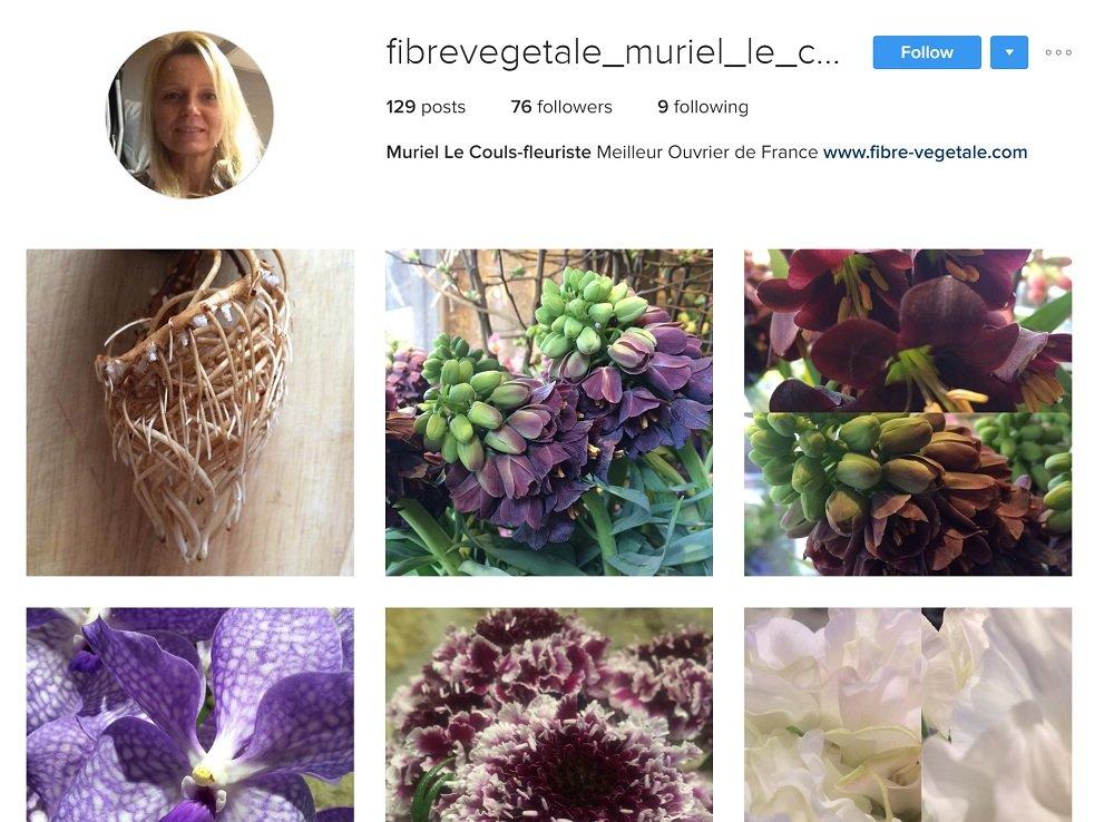 Fibre Végétale: Fleuriste sur Instagram