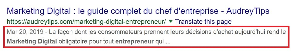 Où s'affiche la Meta Description d'une page Web ?