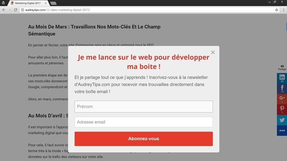 Entrepreneurs - 10 astuces pour décupler votre Mailing List - L'Email Marketing