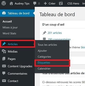 Comment faire le ménage dans vos étiquettes WordPress - Référencement Naturel (SEO)