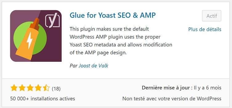 "installez l'extension ""Glue for Yoast SEO & AMP""."