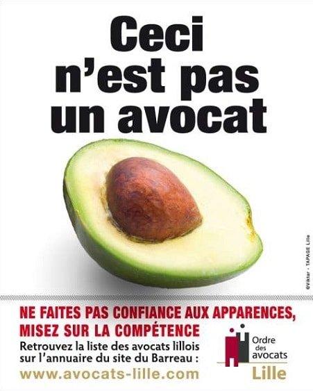 Avocat : un fruit ou un métier ?