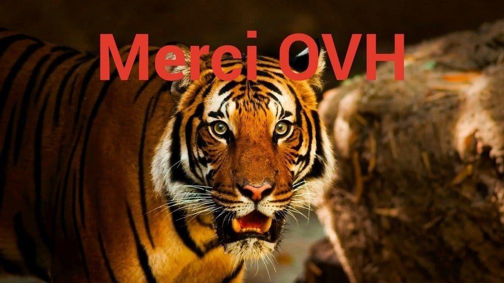 Installer WordPress Sur OVH – Le Miracle Du Module En 1 Clic !