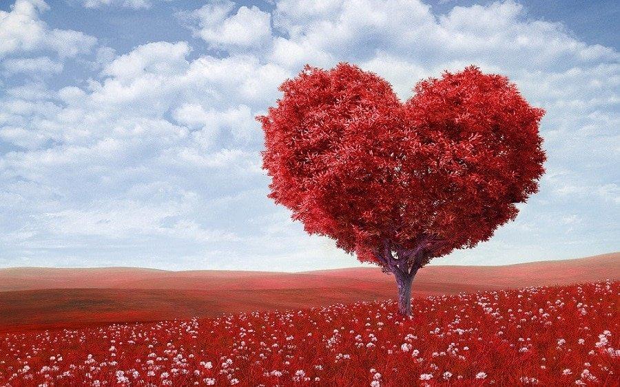 """Facebook Ads : pour acquérir rapidement des """"j'aime"""""""