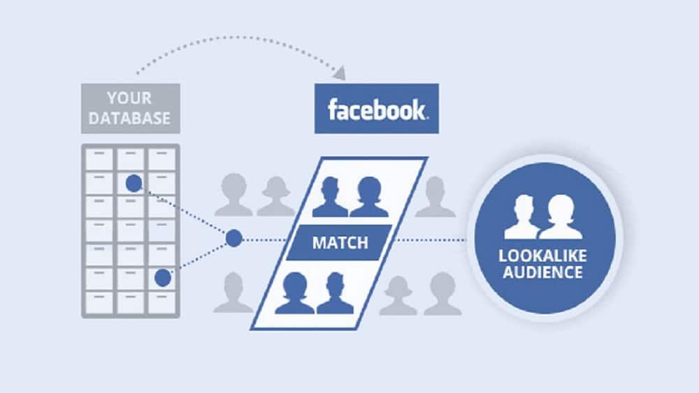 Qu'est-ce qu'une audience similaire de Facebook ?