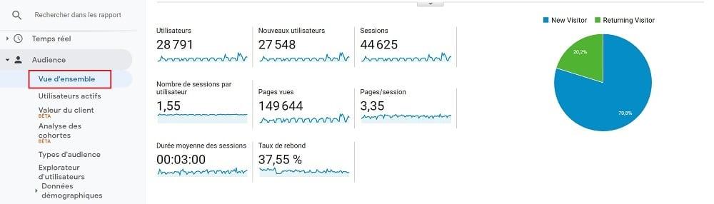 Pour obtenir un aperçu de vos statistiques d'engagement, depuis Google Analytics, accédez à Audience > Vue d'ensemble.